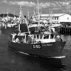 Fishermen Fleet