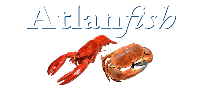 Atlanfish Hero Image